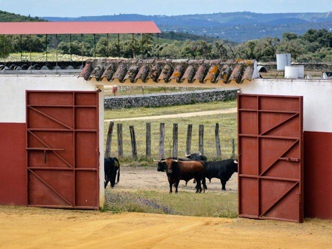 Visita ganadería